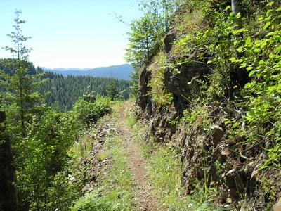 Kings Mountain Trail approaching a cliff in the Tillamook Forest